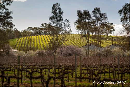 Clare Valley & Yorke Peninsula